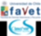 logos_cimasur_favet.png