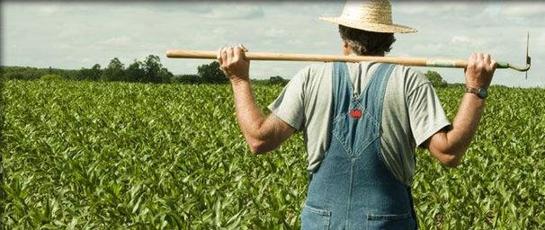 farmer bob.jpg