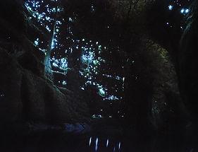 012-Glow-worms-mclaren-lake-2.jpg