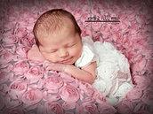Newborn Photography  St. Joesph, MO www.wortha1000wordsstjoe.com 816-279-6000.jp