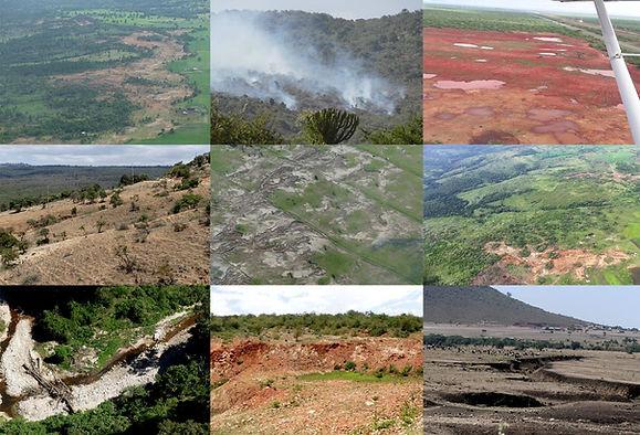 Seedballs Kenya Deforestation.jpg