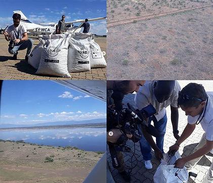 Aerial Seedbombing Seedballs Kenya 5--.jpg