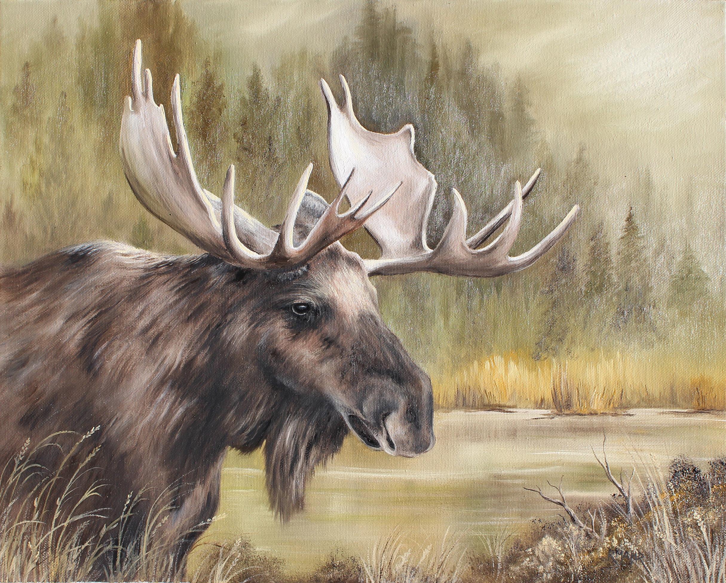 Artbyrosalynmahr Bull Moose