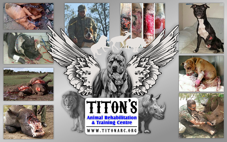 Image result for Titon A.R.C