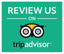 Trip Advisor Review us button