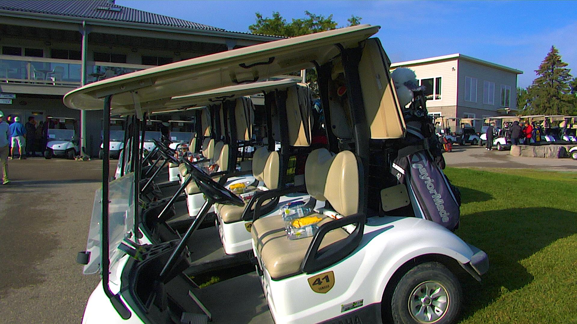 golfelmira Xmas Golf Carts Html on