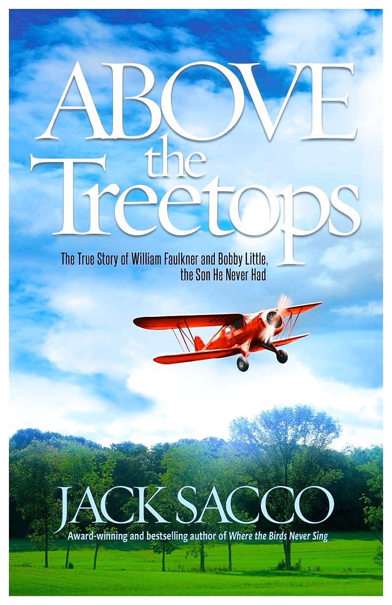 Image result for above the treetops jack sacco