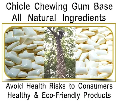 the chicle based chewing gum industry Colgan also lead the way in the manufacturing and packaging of chicle-based chewing gum,  information for industry  gum chewing is regarded as.