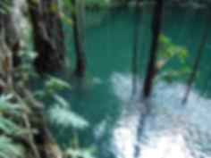 Cenote Xcanche Ek Balam Eco Hotel Yucatan