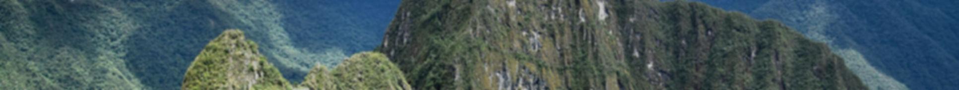 Banner MP5_edited.jpg