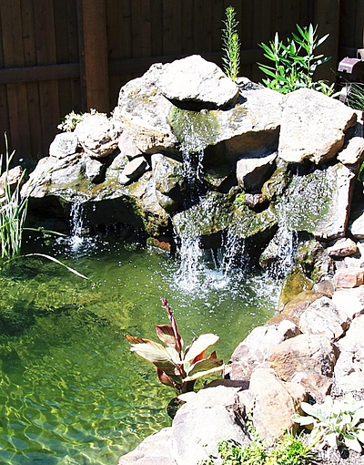 Contact a dallas pond design expert for Pond expert