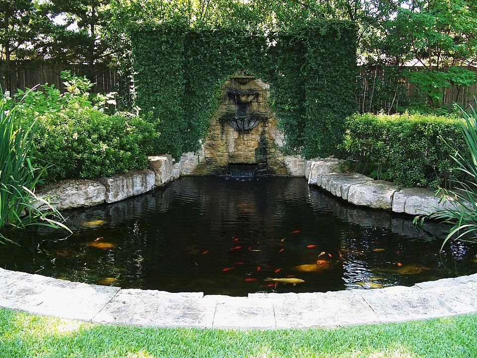 Dallas Pond Accessories And Aquatic Plants