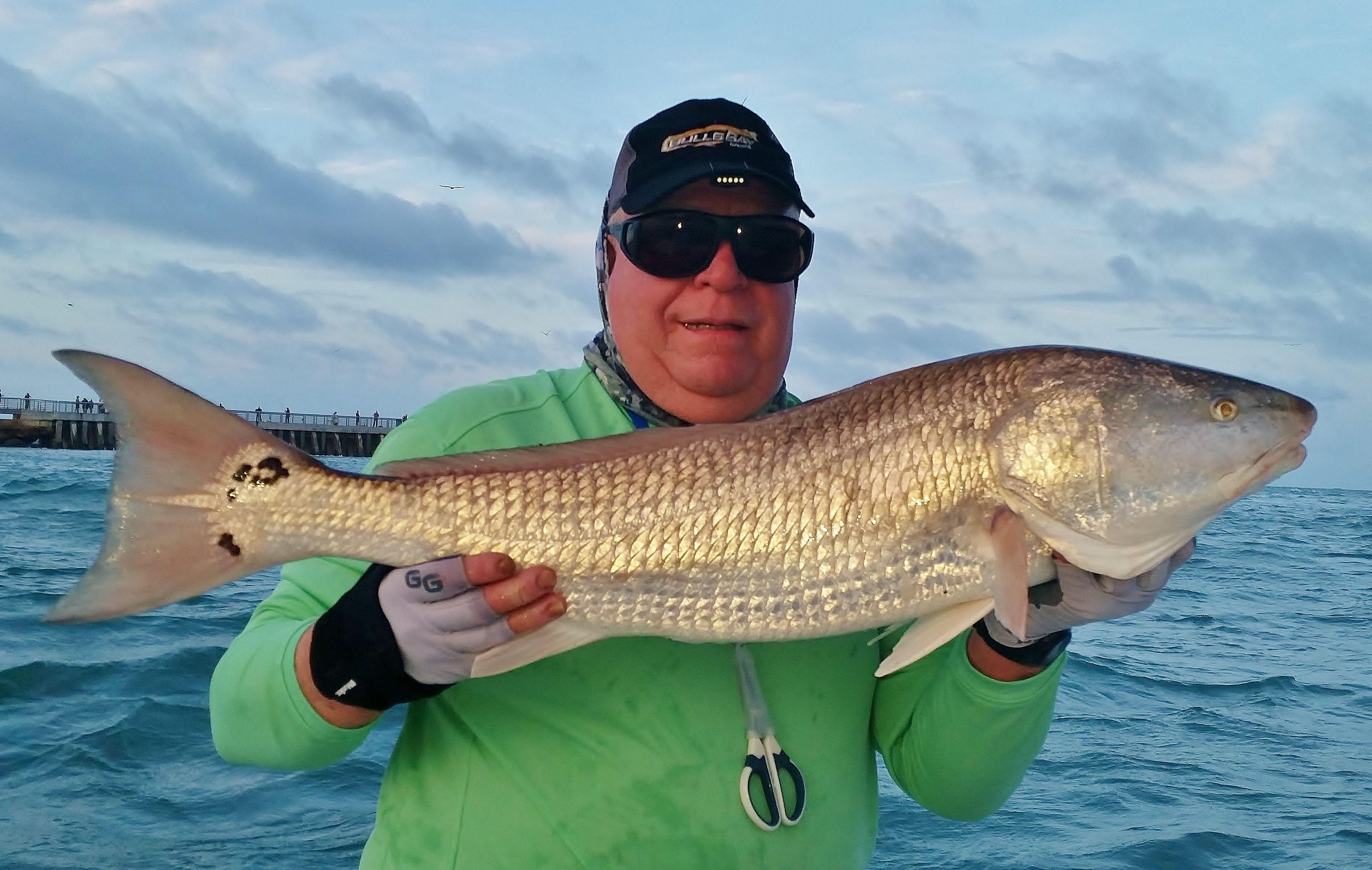 A trout goes for an unusual swim sebastian gypsy fishing for Sebastian fishing charters