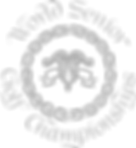WSGF-logo-tan-small.png