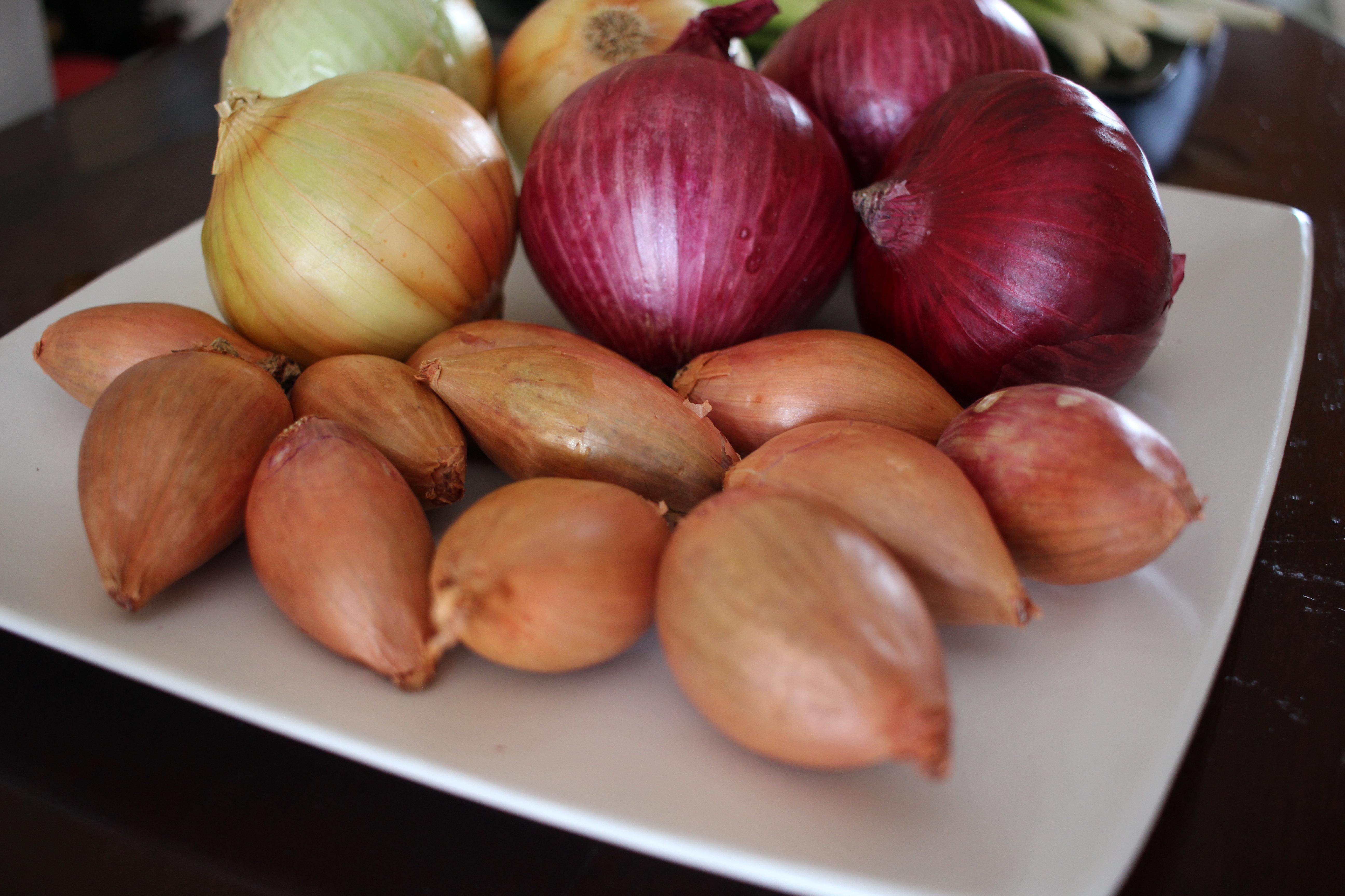 Onion peel in folk medicine. The use of onion peel in folk medicine 25