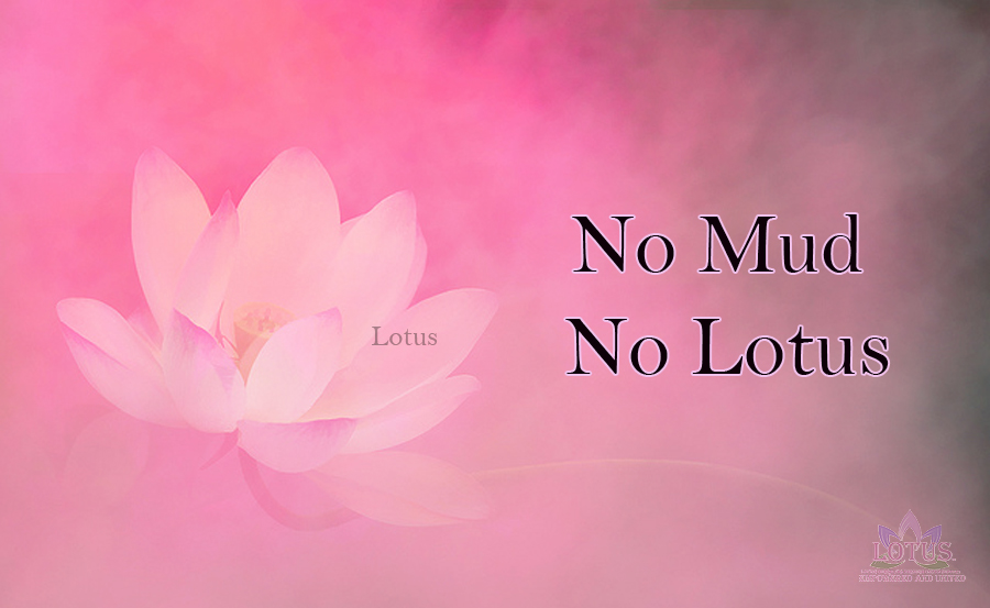 No mud no lotus lotus quotes you asked for them lotus no mud no lotus lotus quotes you asked for them lotus inspirations loving oursleves through united support mightylinksfo Choice Image