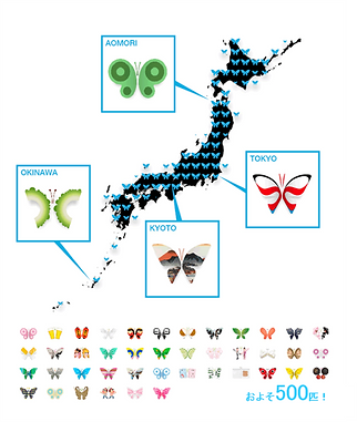 iButterfly分布図