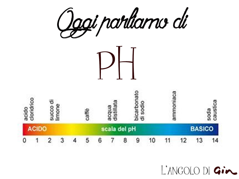 Il pH: cos'è e come si misura  L'angolo di Gin  Reviews  Cosmetici Homemade