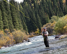 Telluride outfitters 970 728 4475 telluride for Telluride fly fishing