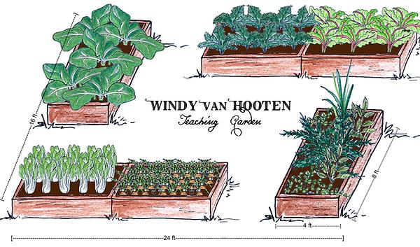 School Garden Illustration.png