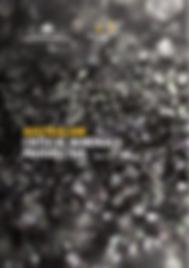 Australian-Critical-Minerals-Prospectus-