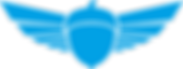 logo squirrel azzurro.png