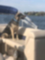 Rocky adopted Leslie first boat ride May