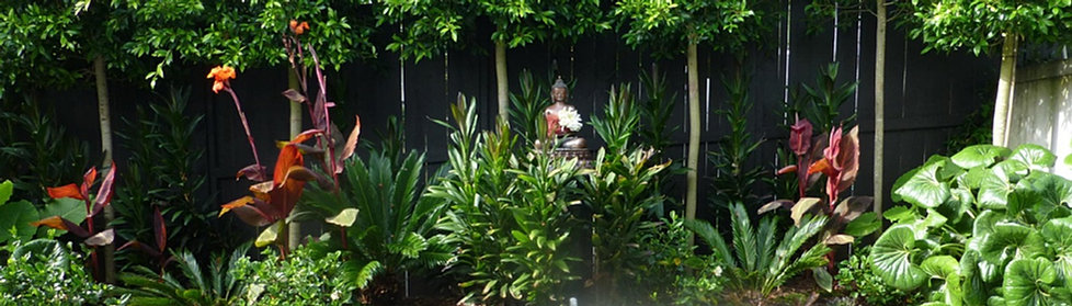 Native landscape nz for Landscaping jobs auckland