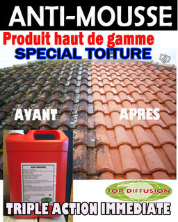 Anti mousse toiture professionnel for Anti mousse naturel toiture