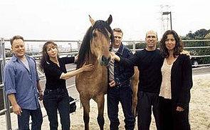Spirit cavallo selvaggio italian fansite curiosit for Spirit colonna sonora