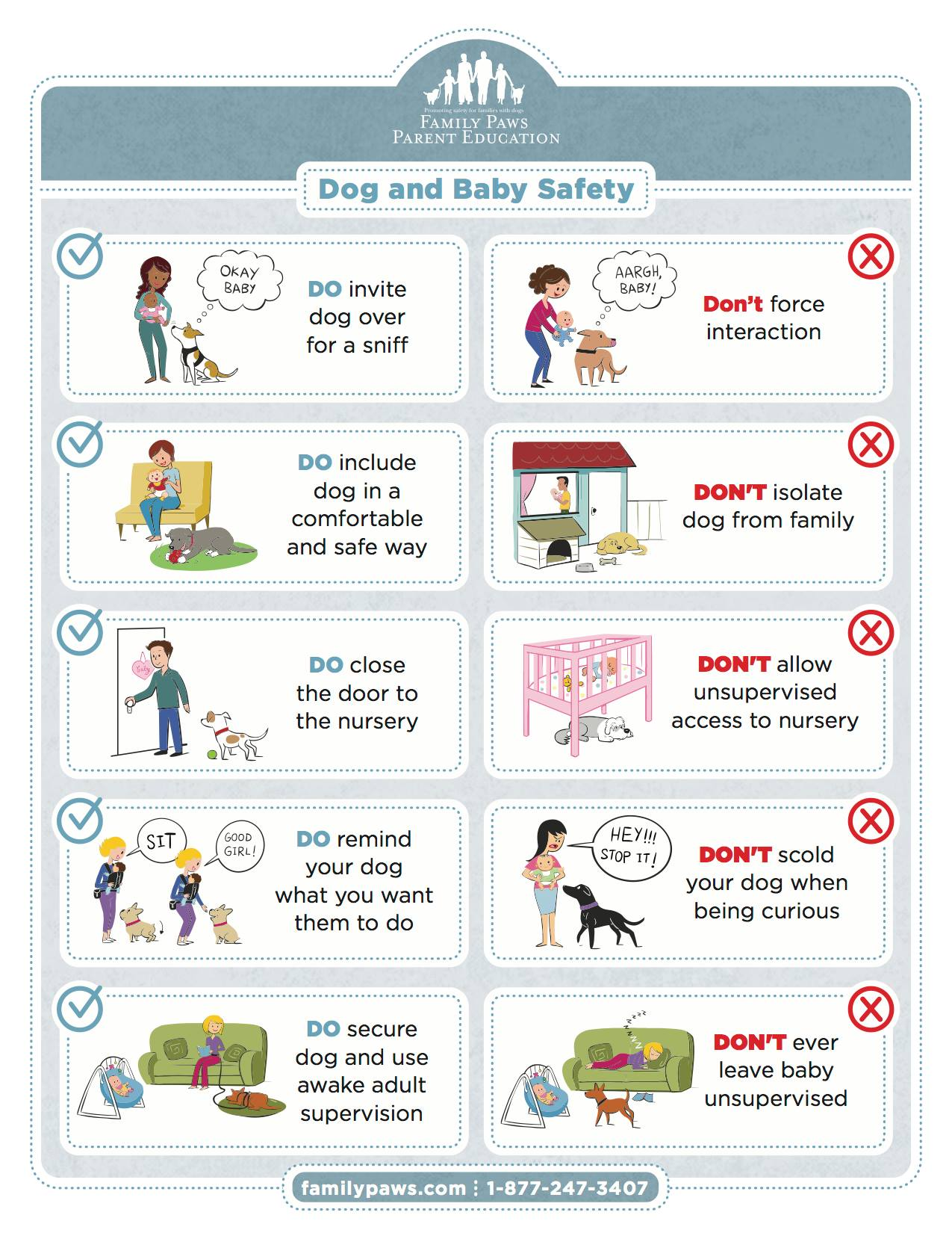 Kids And Dogs Safety Tips Paws Amp Reward Colorado Dog