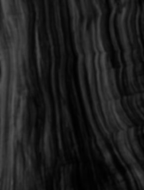 Wood_1_bw_lr.jpg