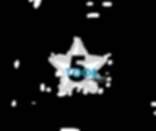 Website Logo .png