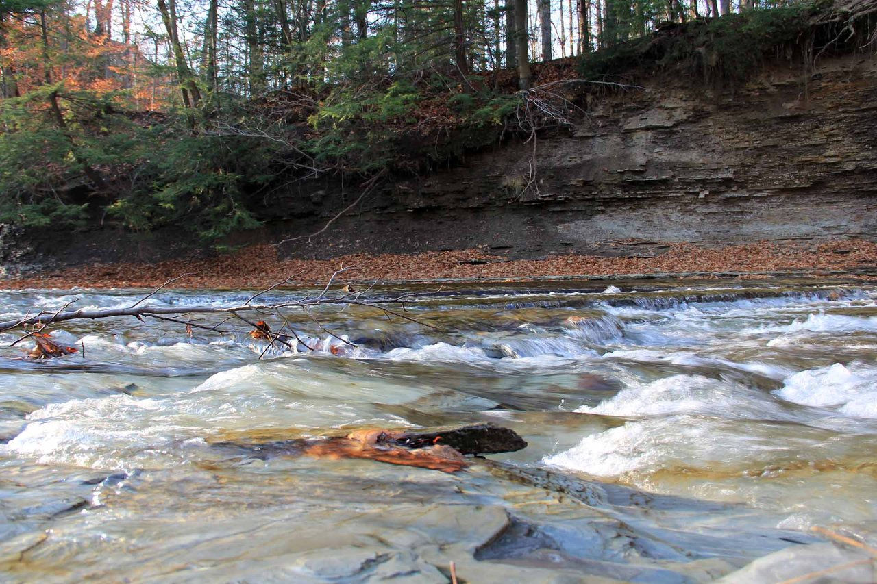 Northern indiana guide service - Indiana Steelhead Guide