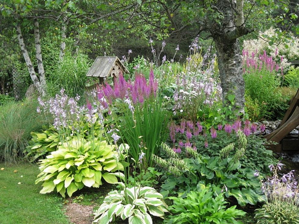 Horaire jardin vivace for Jardin fleurs vivaces