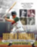 Seasons of Buffalo Baseball Front Cover