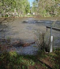 Gunnison River in Gunnison Gauge.jpg