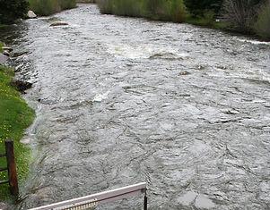 Taylor River at Almont Gauge.jpg
