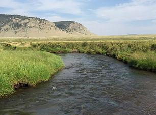 Cochatopa Creek near  Parlin.jpg