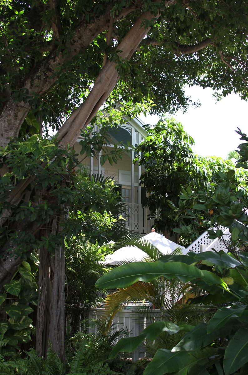 DH Garden Canopy