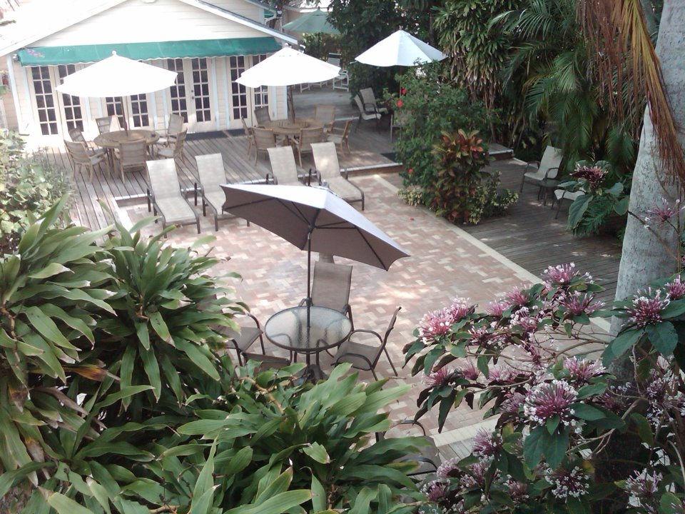 Courtyard Closeup