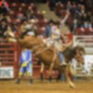 Rodeo Pic.jpg