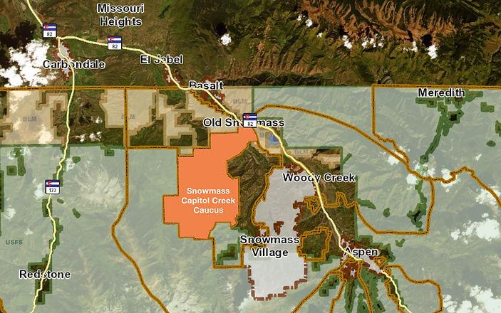 Snowmass Capitol Creek Caucus Map