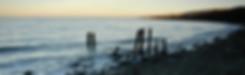 zodshop_DT (110).jpg