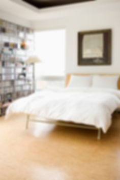SoulKlean is a trusted company providing quality professional house cleaning services at affordable rates.