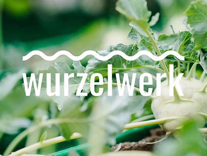 Wurzelwerk_Projekt.jpg