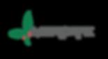 LogoMercage-color.png
