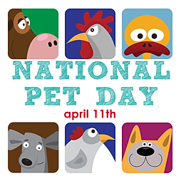 Pet Day USA