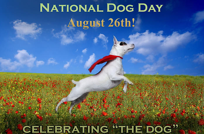 Best Dog Breed - National Dog Day