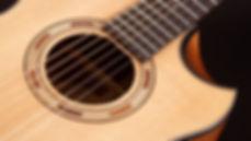 MUSICIANS 1ST CHOICE WASHBURN COMFORT SERIES